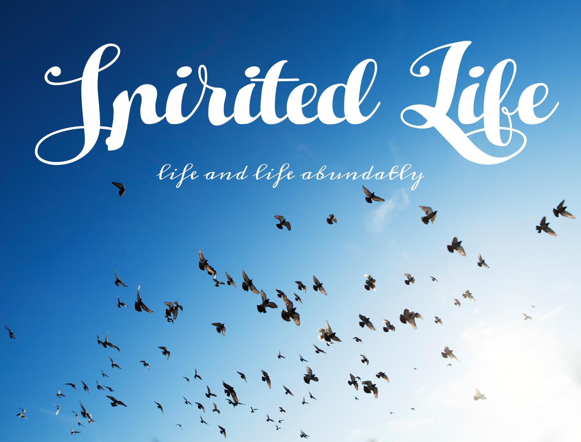 Spirited Life